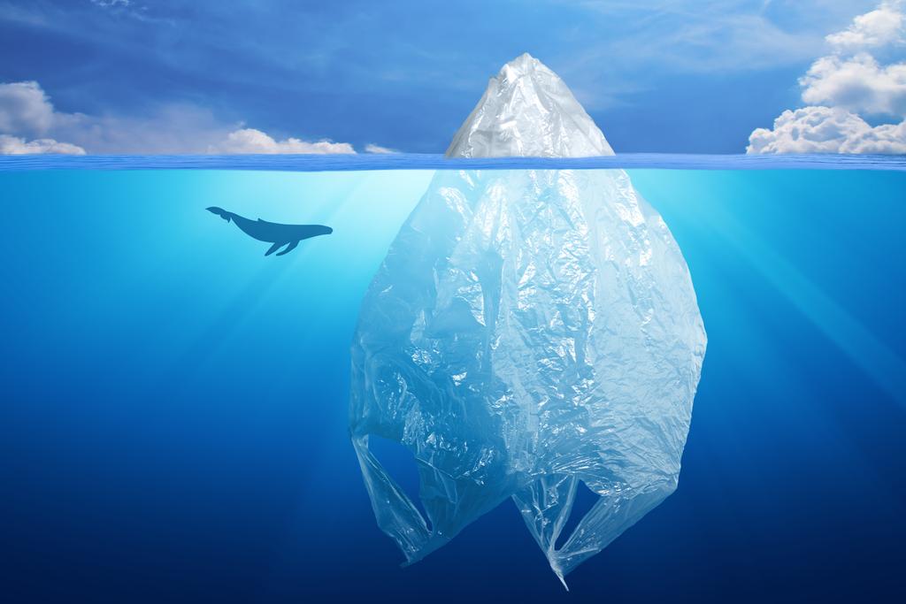 Plastic Aware: consapevolezza e uso responsabile della plastica