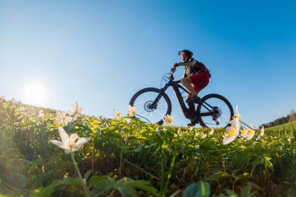 L'impatto positivo dell'e-bike: alla Schiranna la prima stazione di ricarica green d'Europa