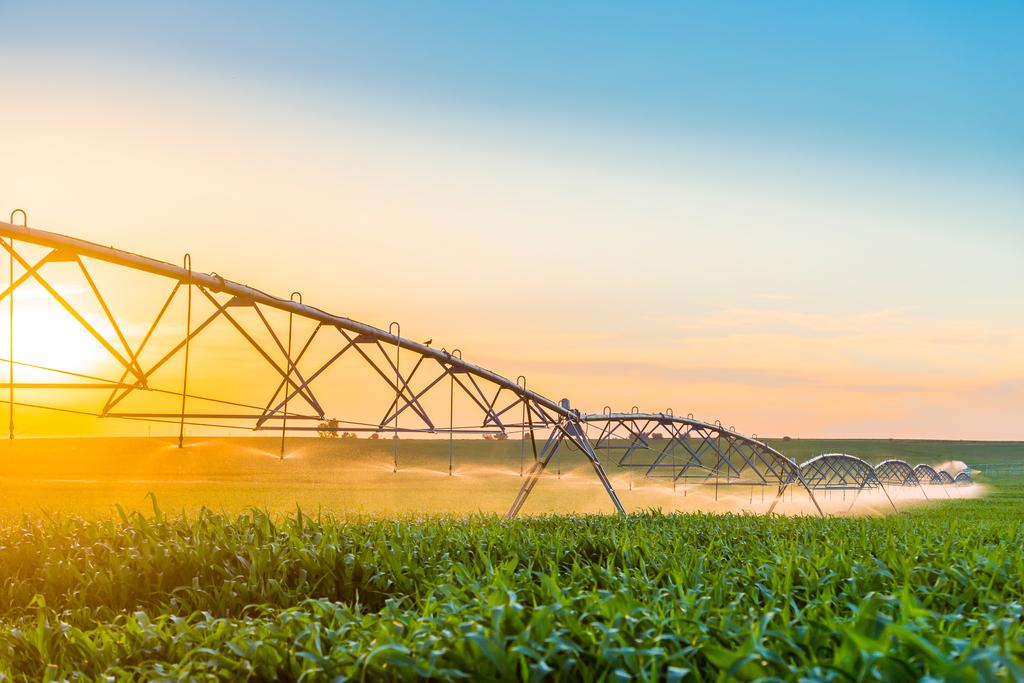 Acqua, energia, cibo e cambiamento climatico